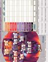 Arcadia Quest Infierno - Hoja campaña e Inventario