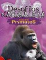 DES04ES