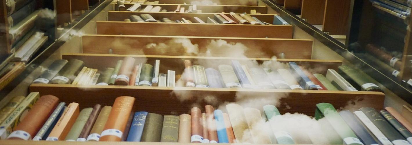 La Bibliothèque du Grenier