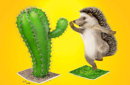 ¿Qué tienen en común un cactus y un erizo?